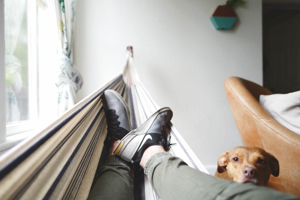 ベンチの上でくつろぐ男性の足と犬