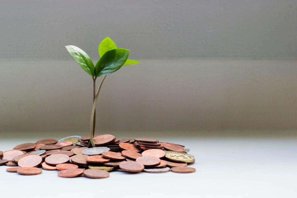 駐在でアメリカの通貨を貯金して芽が出てる